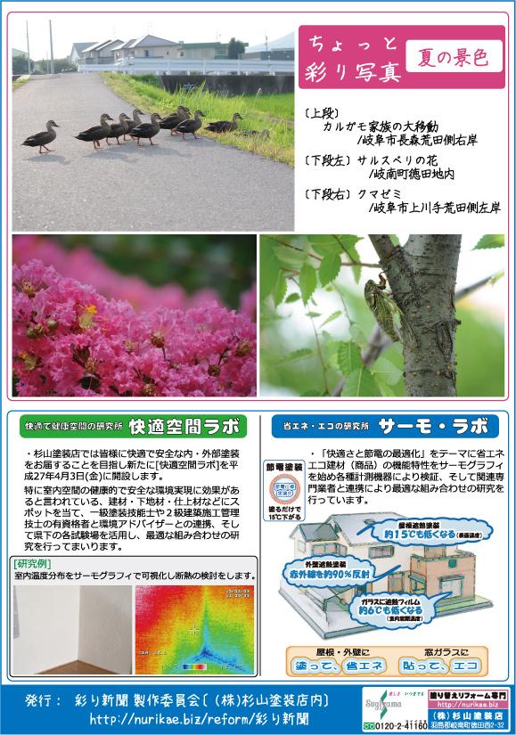 彩り新聞第41号_うら