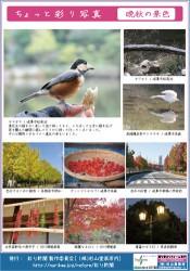 彩り新聞第25号うら面