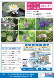 彩り新聞第34号_裏面