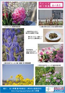 彩り新聞第45号_うら面