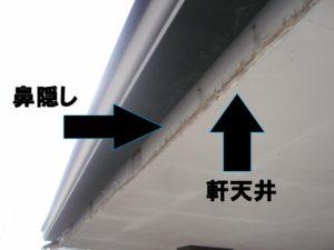 鼻隠し・軒天井調査写真