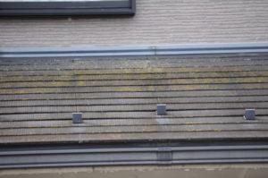 屋根調査写真②