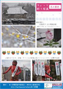 彩り新聞第50号_裏面
