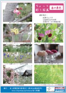 彩り新聞第51号_裏面