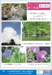 彩り新聞第53号_裏面