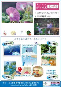 彩り新聞第59号_裏面